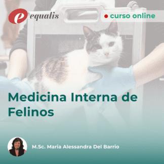 Medicina Interna de Felinos
