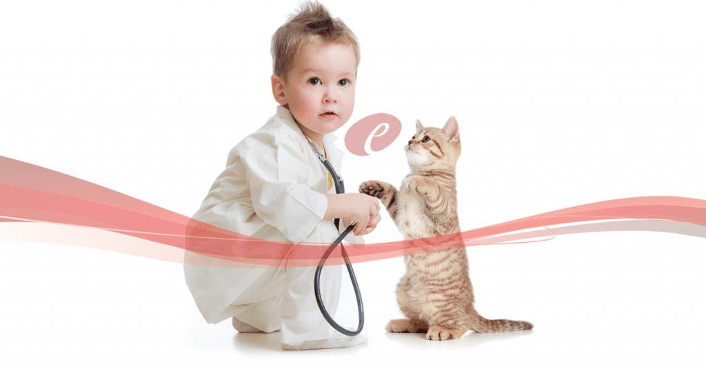 Especialização-Cursos-Pós-Graduação-Felinos-Atualização-Gatos-Pequenos-Animais.fw_-1024x535