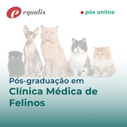 Pós Graduação Clínica Médica de Felinos